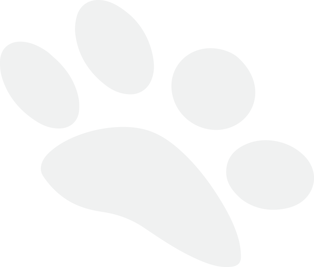 Northern Adelaide Pet Sitters - pet sitter grey paw print.